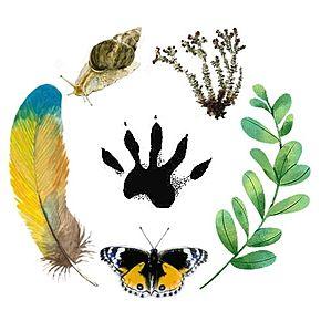 Large logos do projeto biocidades