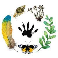 Small logos do projeto biocidades